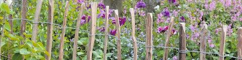 hegnog afskærmning til have og terrasse