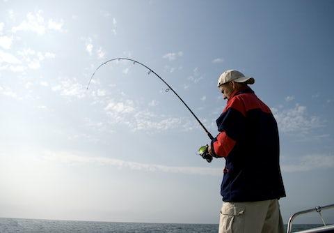 Alt til fiskeri