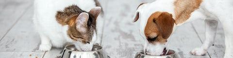 Stort udvalg af dyremad og dyreartikler til husets kæledyr