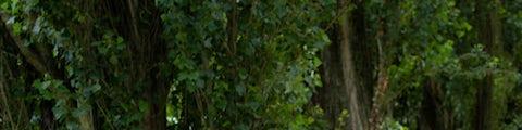 Køb SCO cykler på Bilka.dk