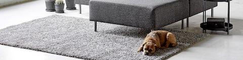 Lækkert tæppe og skind til boligindretningen i stuen