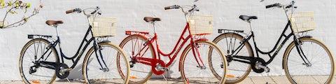 Find cykler fra PUCH